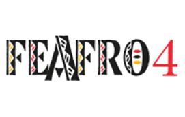 imagem do evento FEAFRO 2019